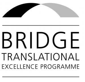 BRIDGE logo - besøg BRIGDE hjemmeside
